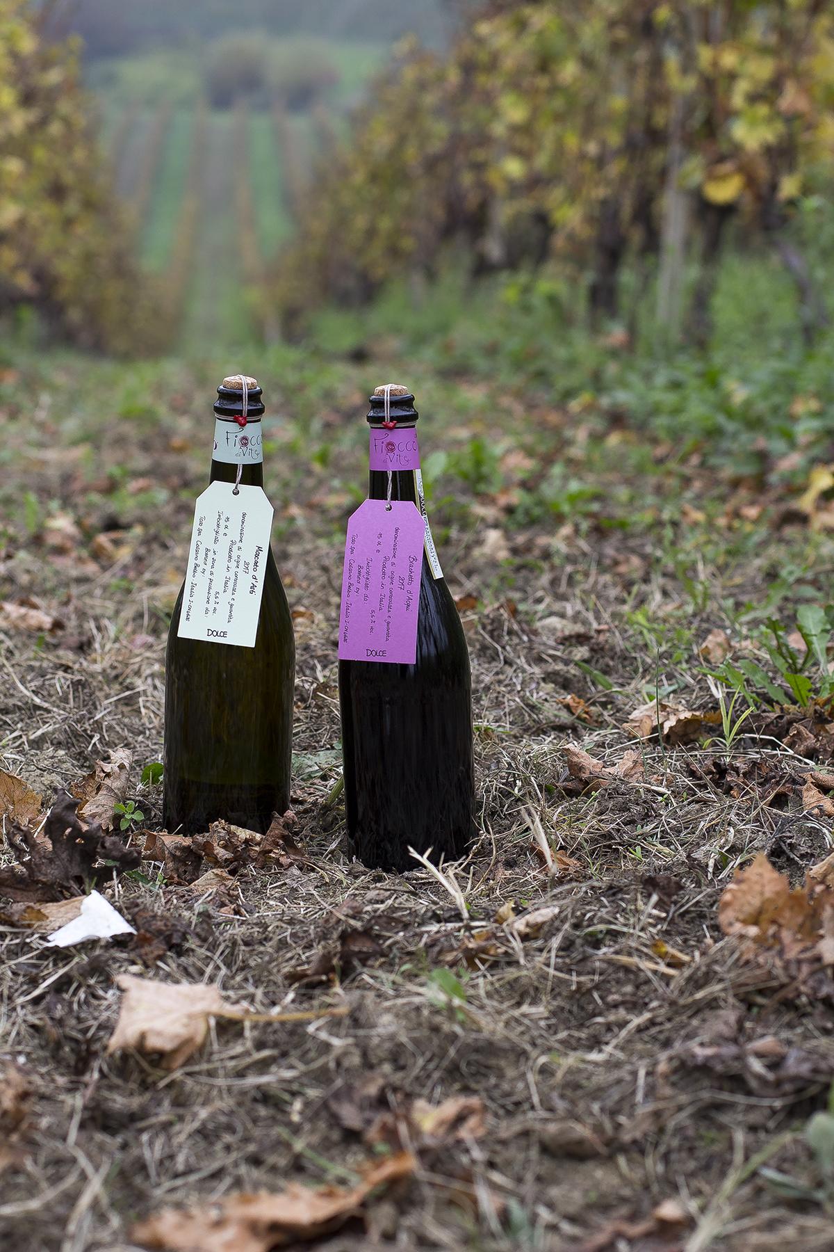 Fiocco Di Vite Piemonte Doc Bianco Fiocco Di Vite Vino Frizzante 6 Bottiglie 6x75cl